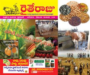Raithe Raju Telugu Magazine